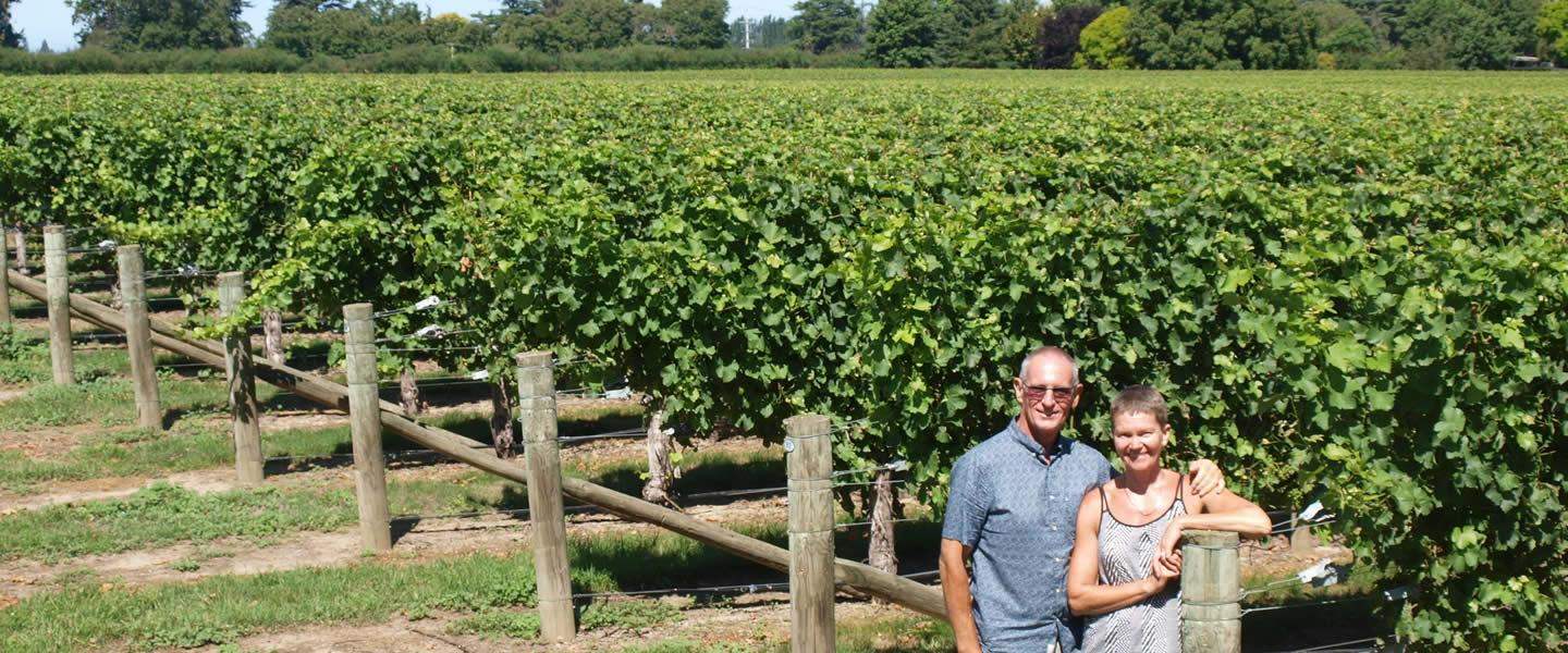Vicarage Lane Wines from Marlborough and Canterbury in New Zealand