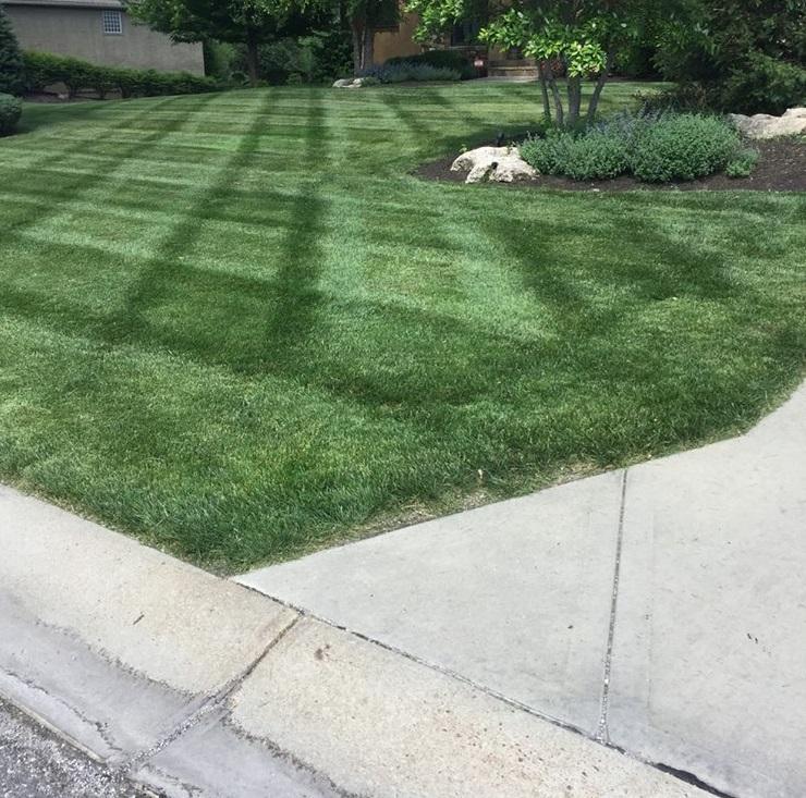Midwest Lawn Maintenance