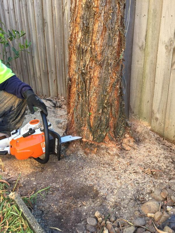Larry's Tree Service LLC