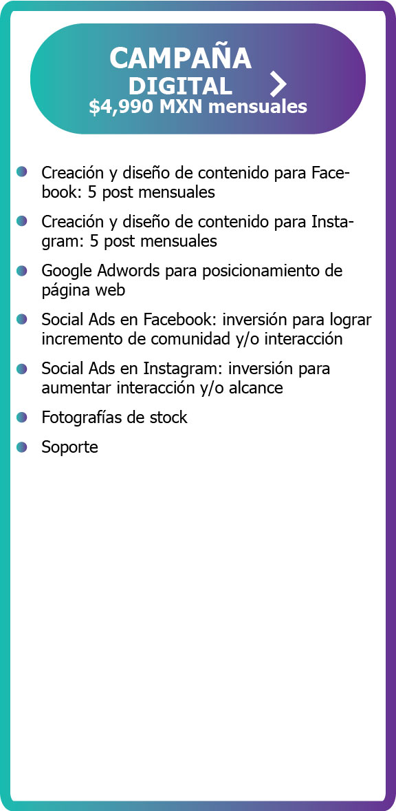campaña digital google adwords analytics social ads facebook instagram