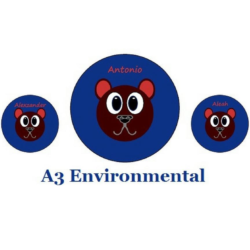 A3 Environmental Logo