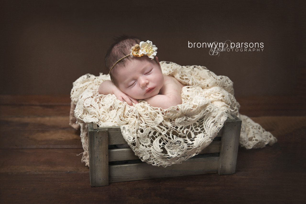 Newborn Baby Photos Canberra