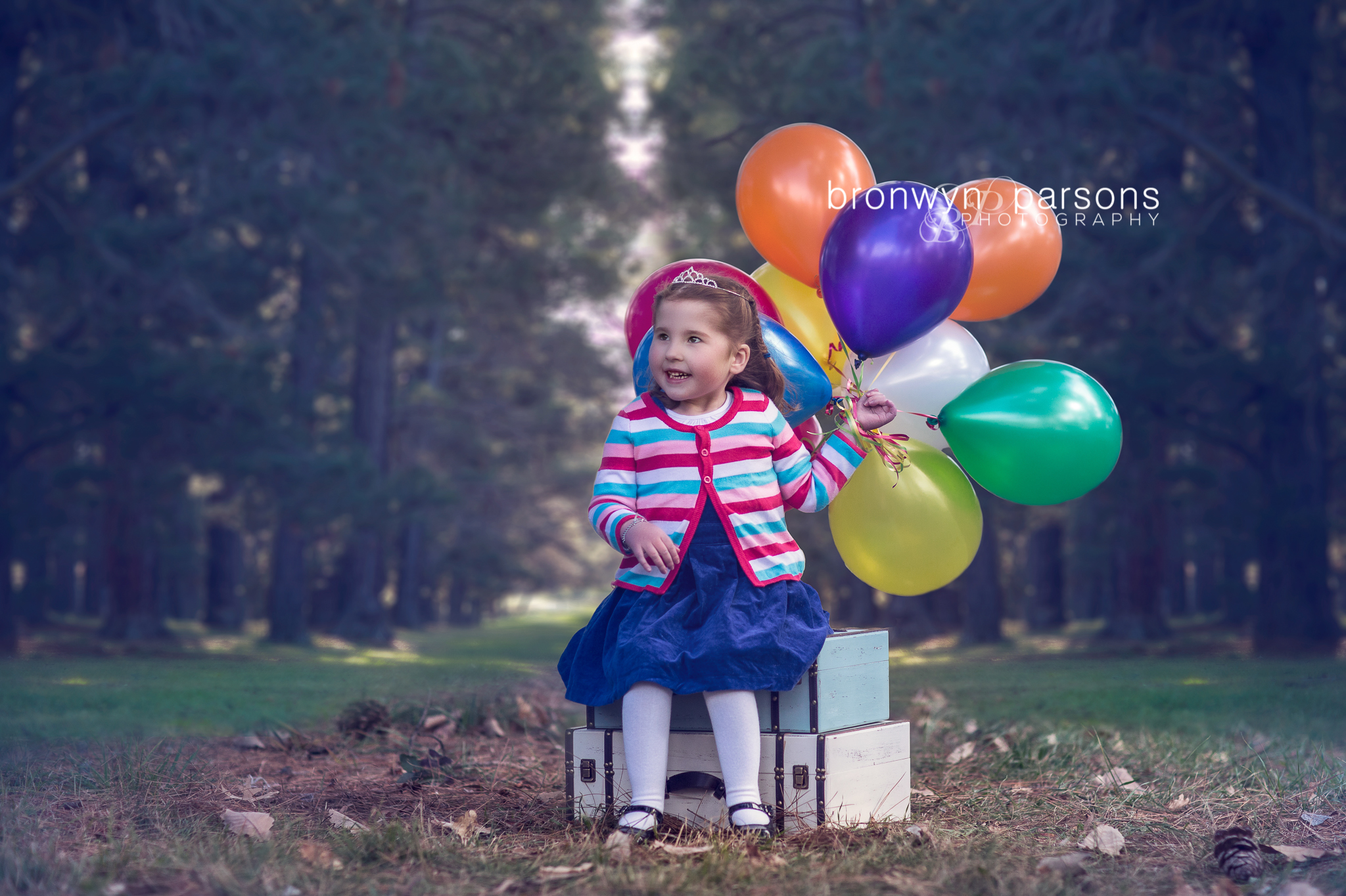 Birthday photography girl balloons Canberra Family Photographer