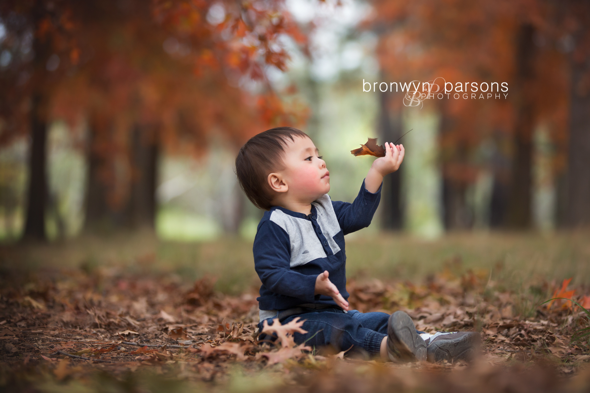 Autumn children's toddler family photography canberra
