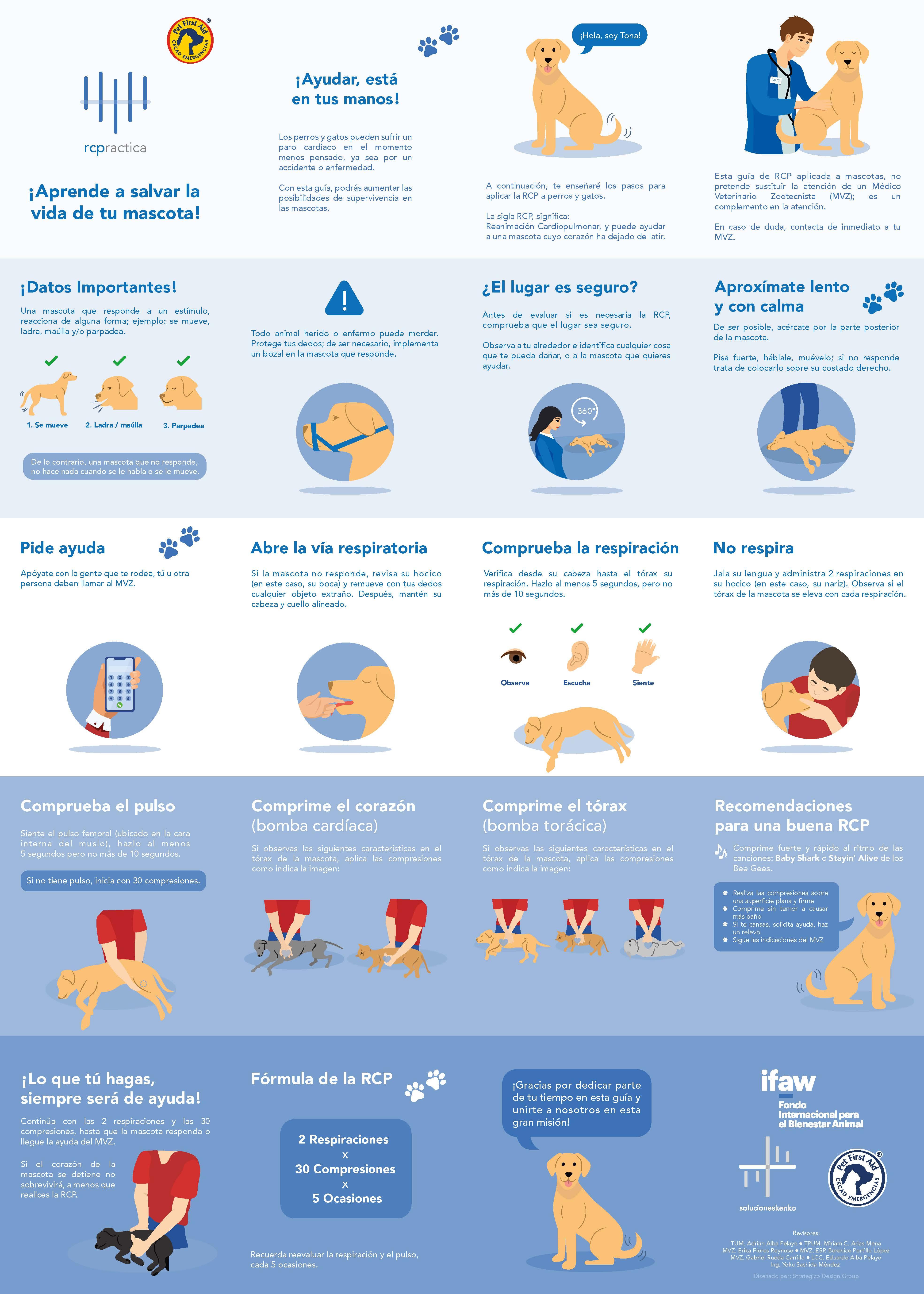 Reanimación Cardiopulmonar RCP para Mascotas