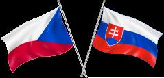 zastoupeni ČR a SR